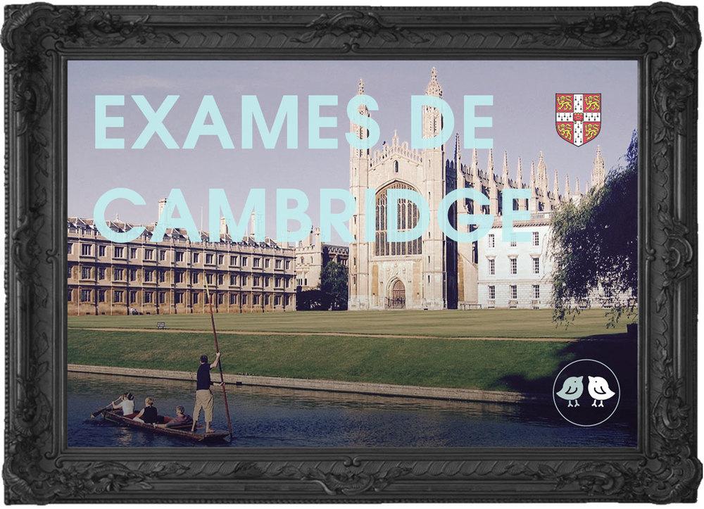 Treinamento para Certificação dos Exames de Cambridge - Estúdio447