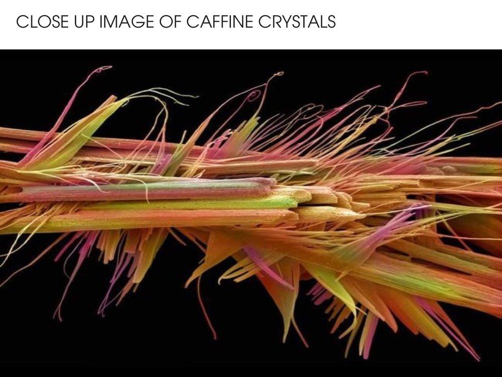 Close up of caffeine crystals - coffee