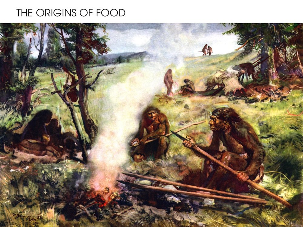 The origins of food