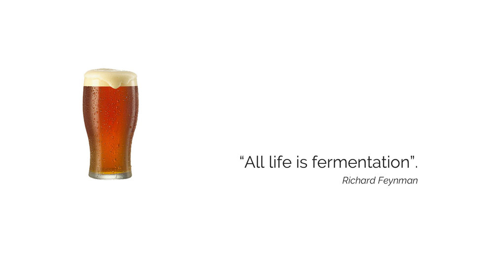 The Beauty of Beer - All life is fermentation.jpg