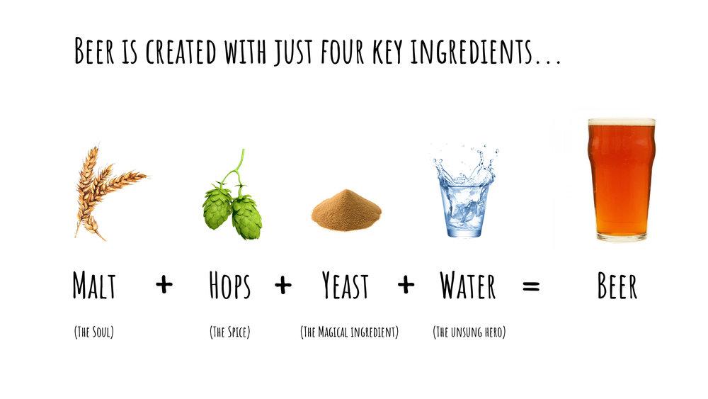 The Beauty of Beer - beer ingredients.jpg