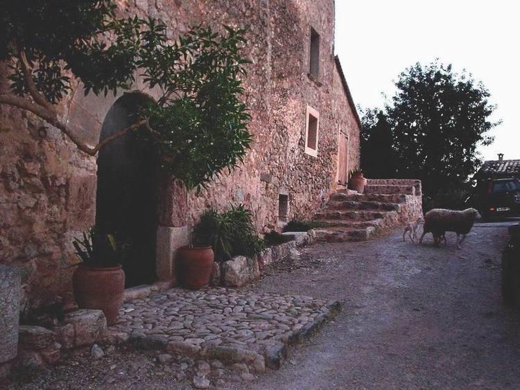 fachada+ovejas.jpg