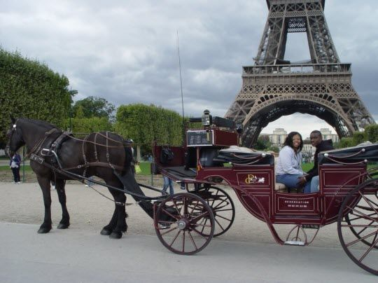 horse and cart.jpg