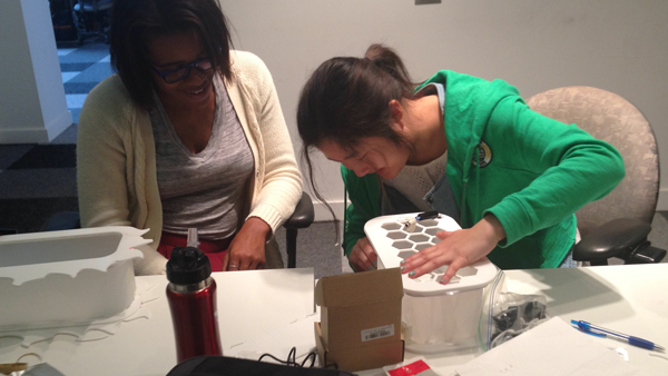 Carah Alexander and Amanda Zhang assemble their custom-cut acrylic designs to the Looplamp base.