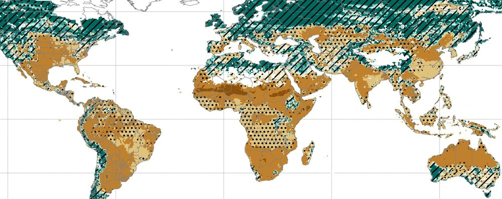 The Global Gridded Crop Model Intercomparison Project (GGCMIP) Phase II Experiment