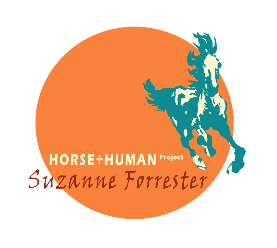 Horse+Human Project