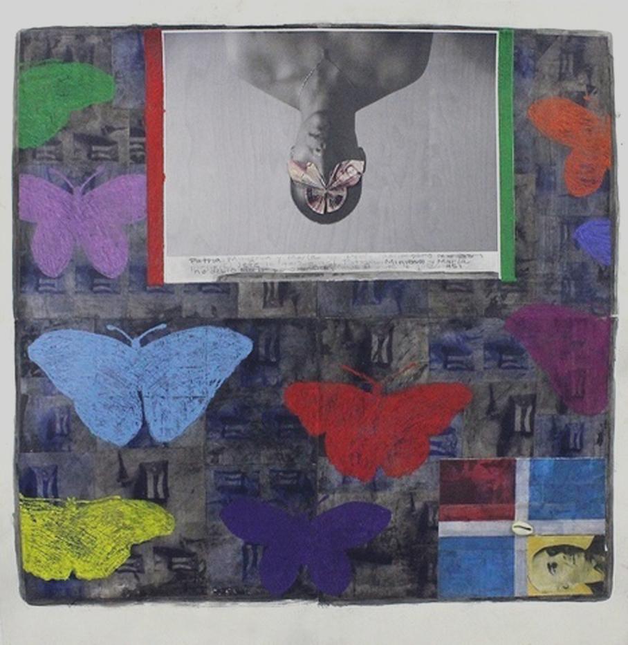 Mariposas, mariposas y mas mariposas, 2014.jpg