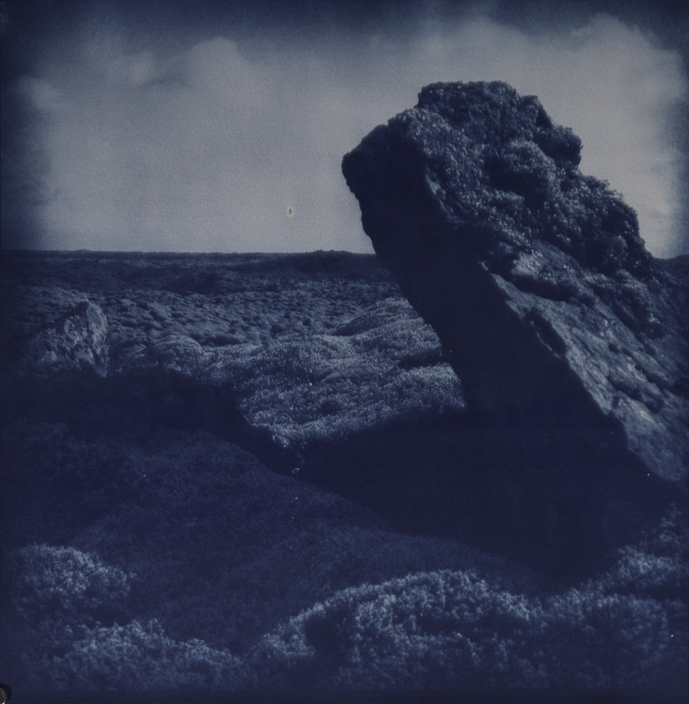 Michael McCarthy  Earthbound  2017 cyanotype 31 x 31 cm