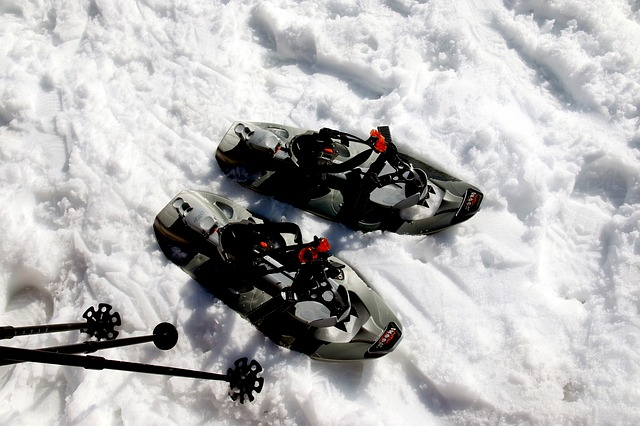 snow-shoes-417933_640.jpg