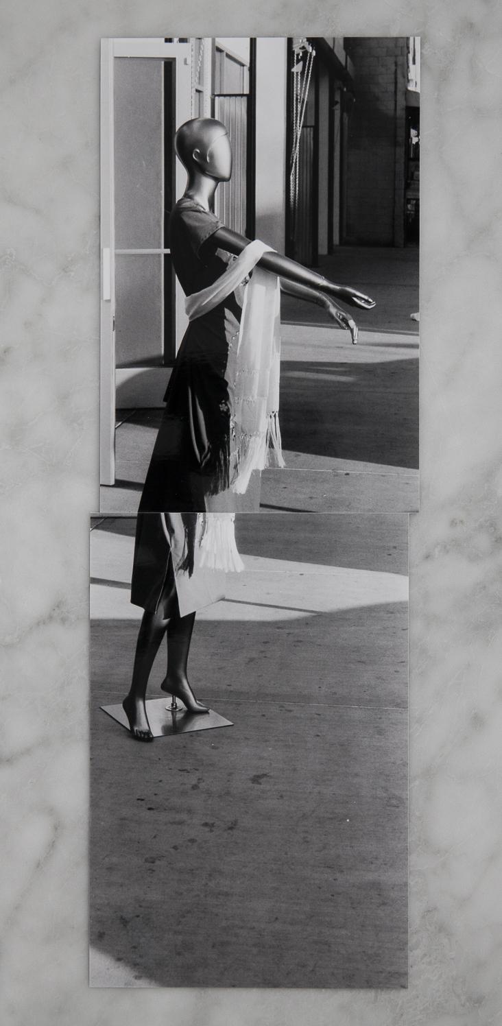 The Woman in Silver.jpg