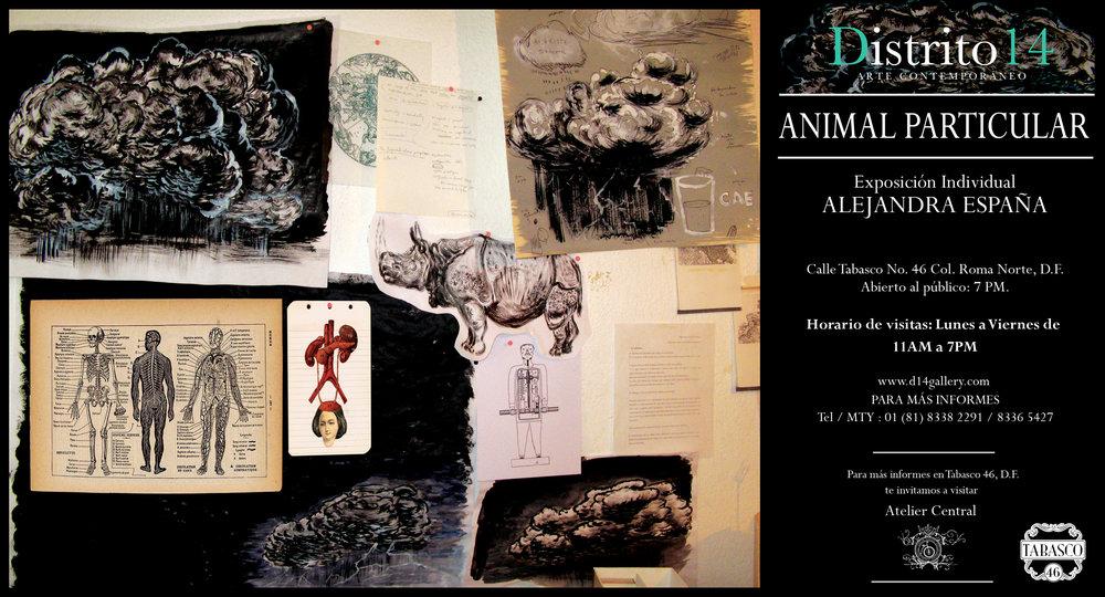 "ALEJANDRA ESPAÑA ""ANIMAL PARTICULAR""    DISTRITO 14 /  MEXICO, D.F    OCTUBRE 2012"