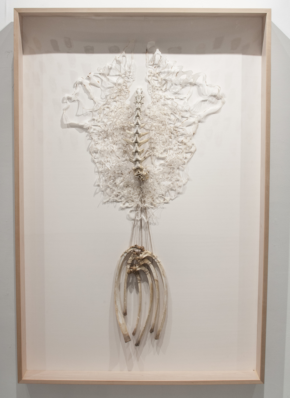 Flesh and Bone  Handcut and Burnt Rice Paper, Beeswax, Bone  2013