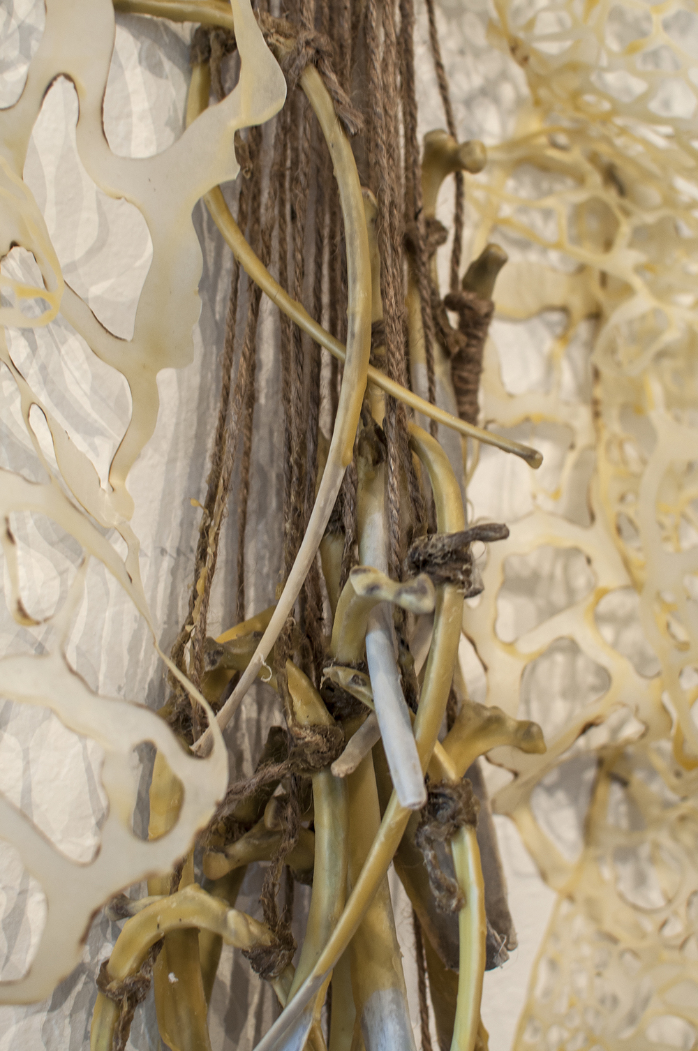 Makeshift Body Detail  Handcut and Burnt Rice Paper, Beeswax, Bone  2014