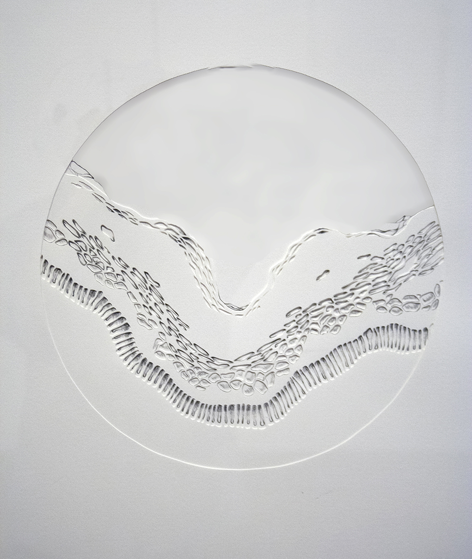 Untitled  Handcut Paper, Graphite  2013