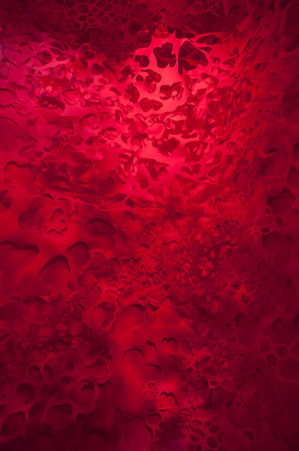 Vascular Caverns: Installed at 707 Gallery  Handcut Paper  2015