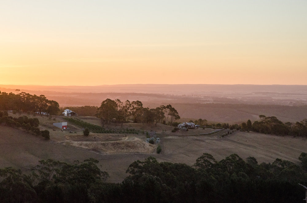 Australian countryside. Victoria, Dec. 2015.