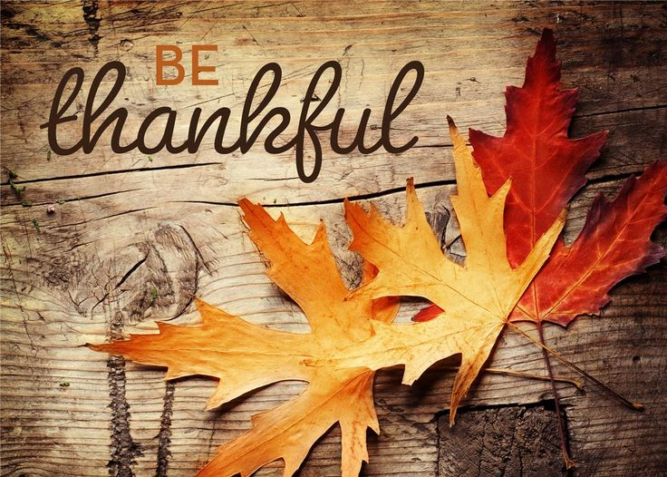 cfaa517e9d9b9f71071212cc5c39394d--rustic-thanksgiving-happy-thanksgiving.jpg