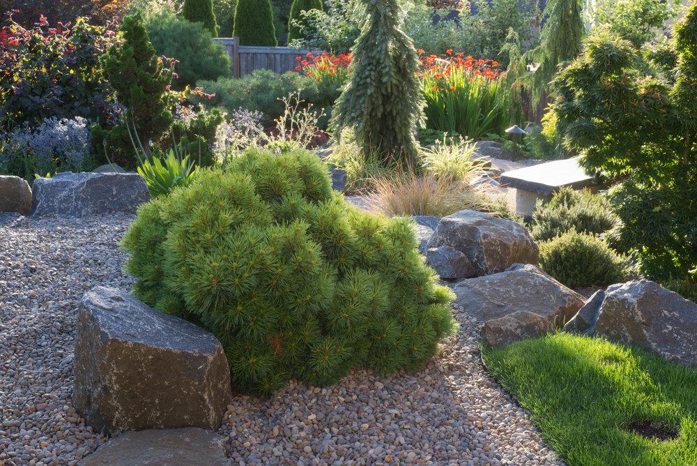 Sept Garden 11.jpg