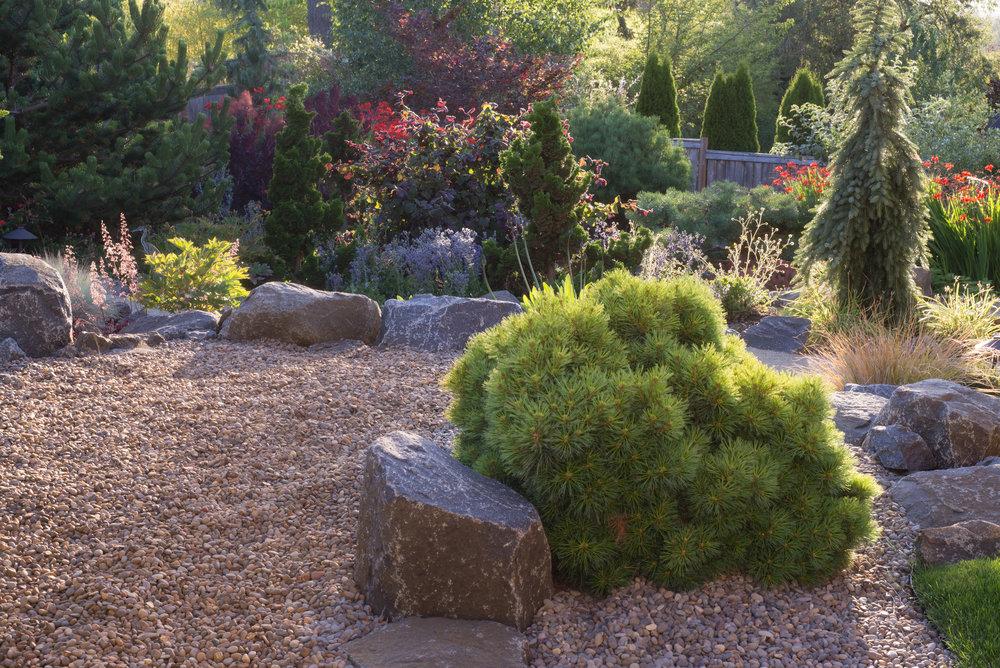 Sept Garden 12.jpg