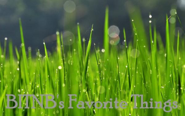 1-Drops_on_Grass2_wallpaper.jpg
