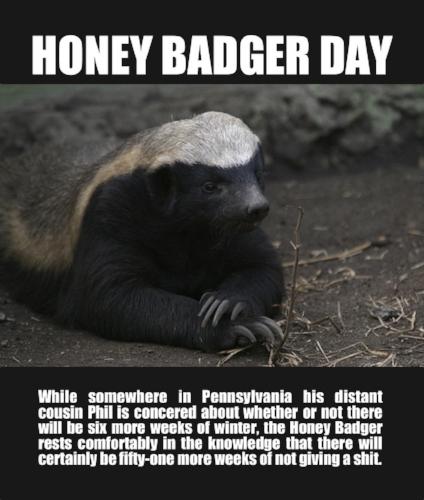 honey-badger-BITNB.jpg