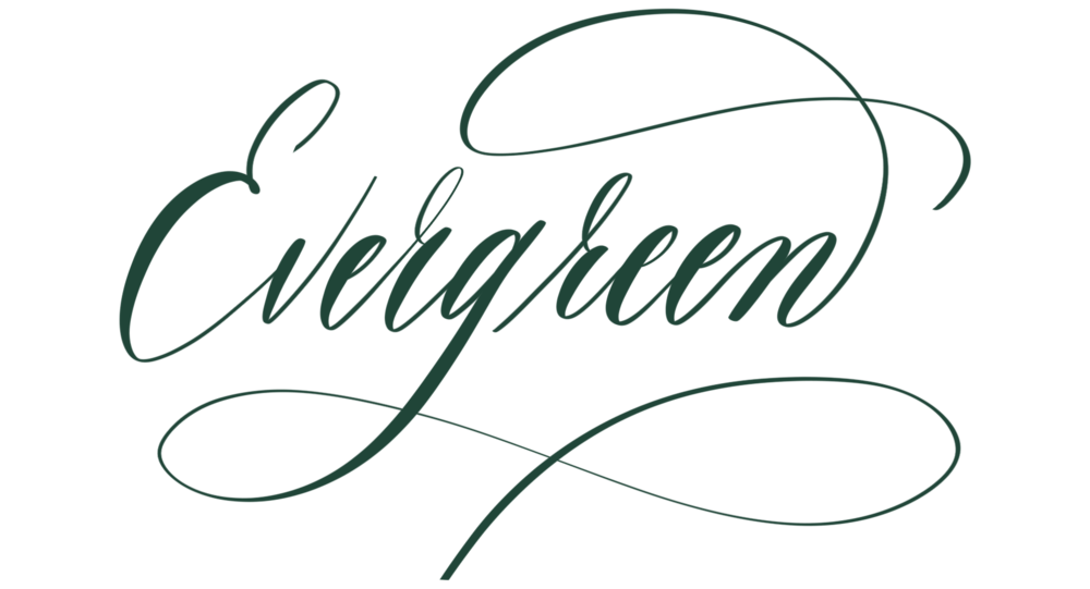 evergreen in calligraphy