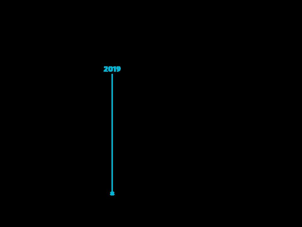 MG-Timeline_Portfolio4.png