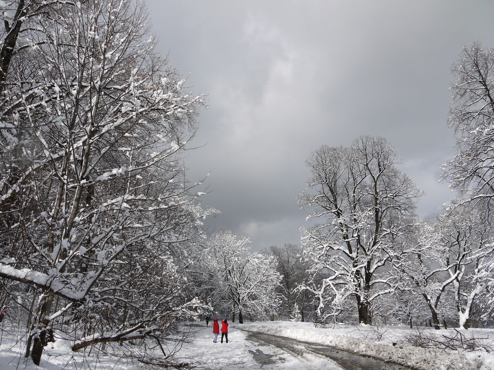 After a blizzard in the Neathermead, Prospect Park