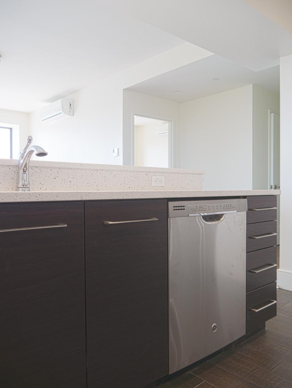 6 dishwasher.jpg