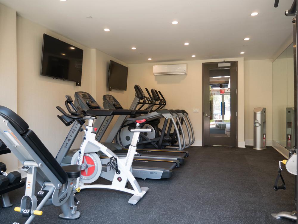 Gym Opp Sidish.jpg