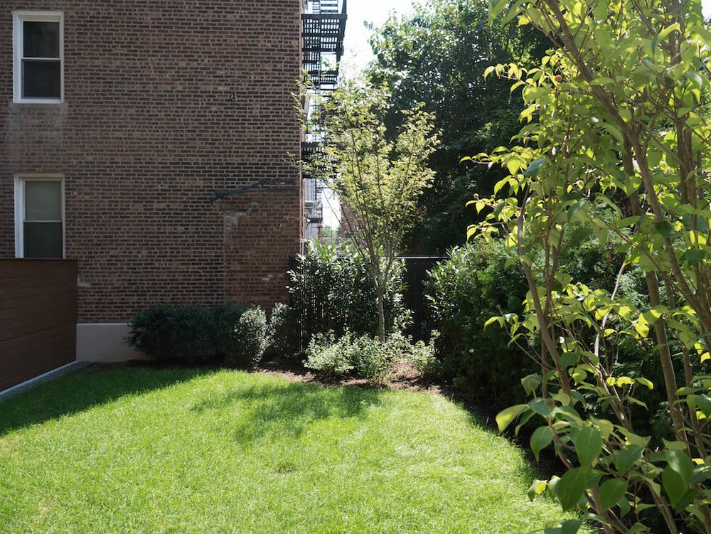 5 - Common Backyard.jpg