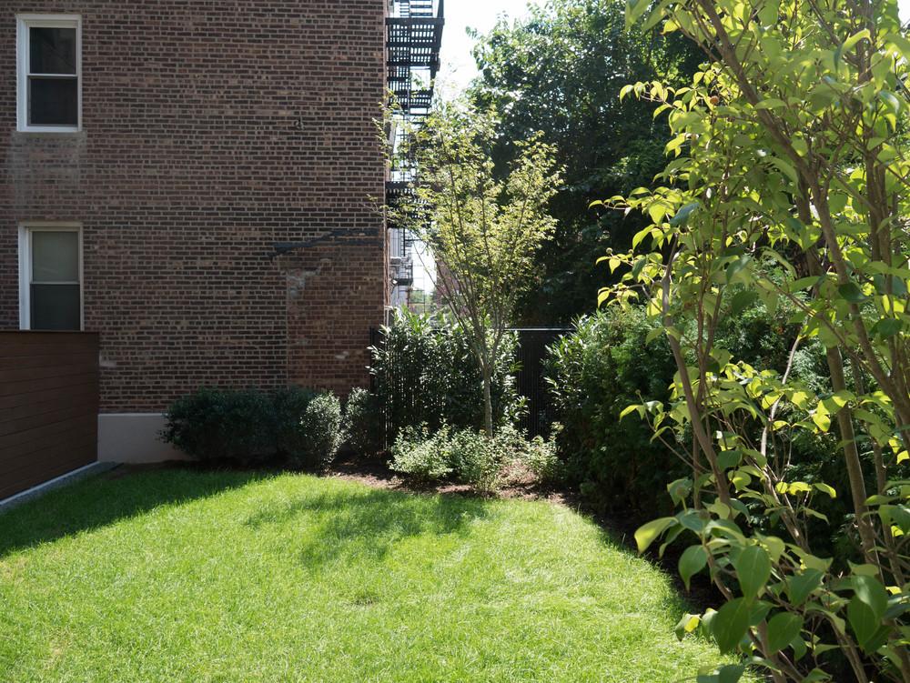 3 Backyard.jpg