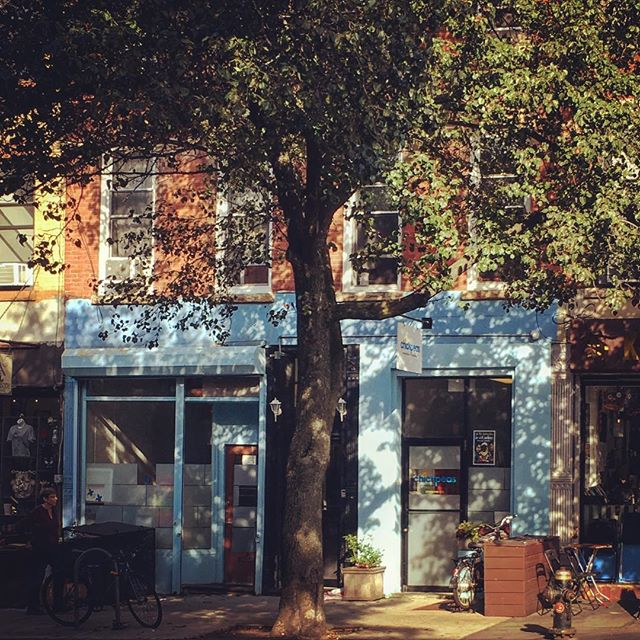 #dappledlight in #parkslope #brooklyn #frenchblue #brick #primarycare #trees #storefront #southslope