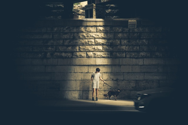 Boy standing under street light holding a leash to a dog.