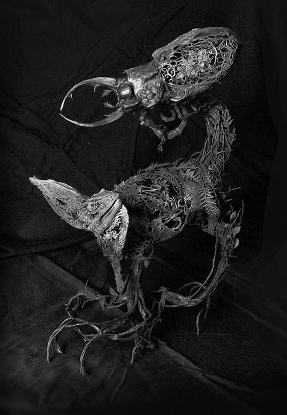Chameleon6.jpg