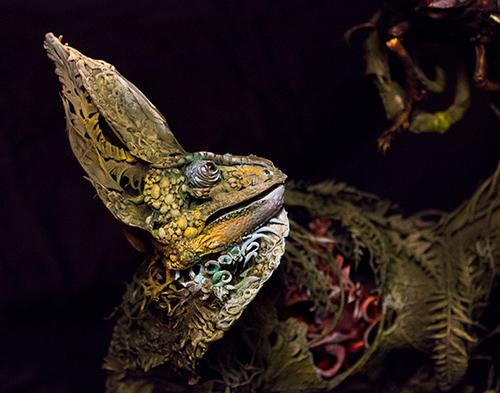 Chameleon8.jpg