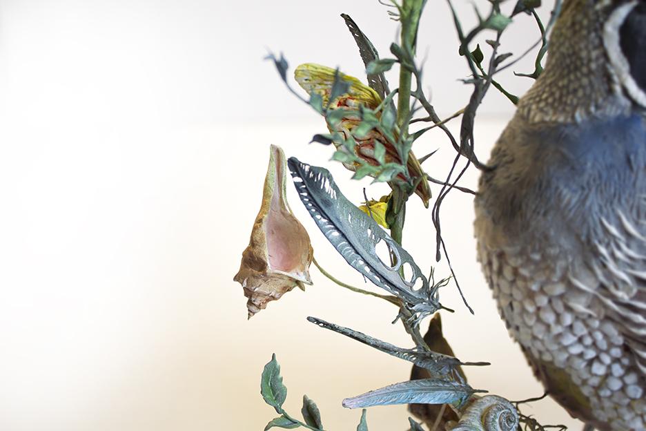 quail4.jpg