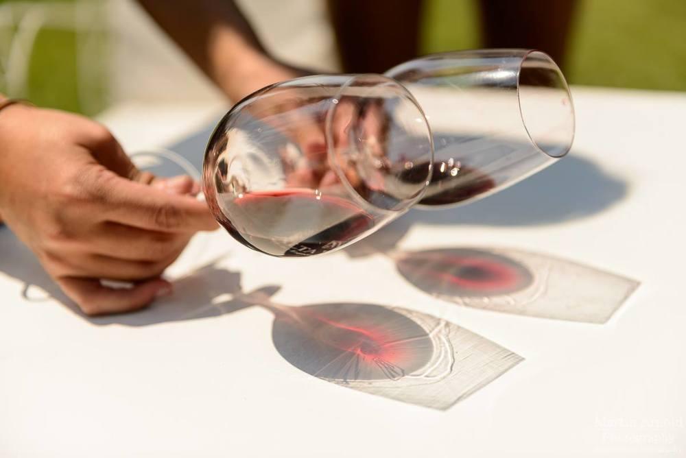 mendoza red wine glasses