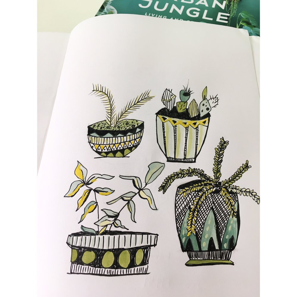 up close drawing plants.JPG