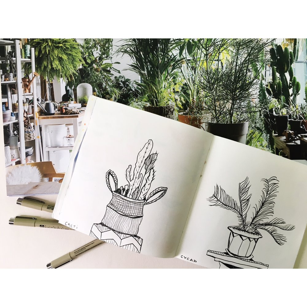 drawing plants.JPG