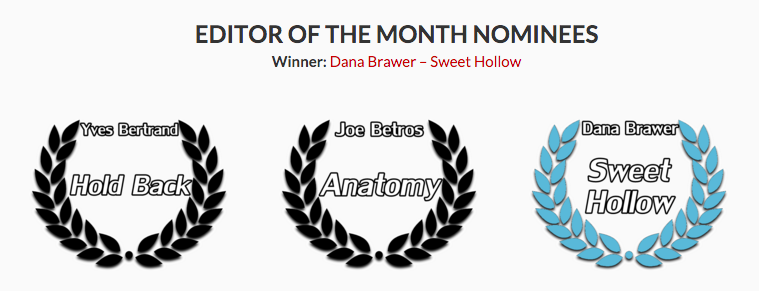 dana-brawer-best-editor