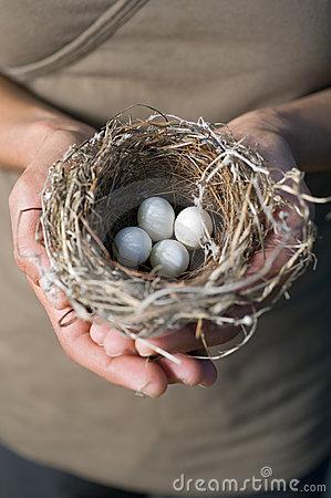 Hands Holding Eggs ~ Shutterstock