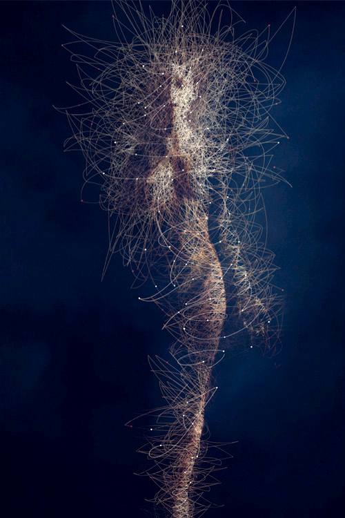 Body Microbes ~ Bruno Vergauwen