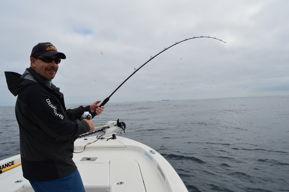 Rob from LA Rod and Club bending on a nice local Yellowtail!