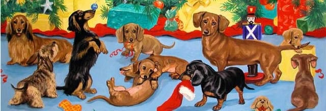 Doxies Love the Holidays!