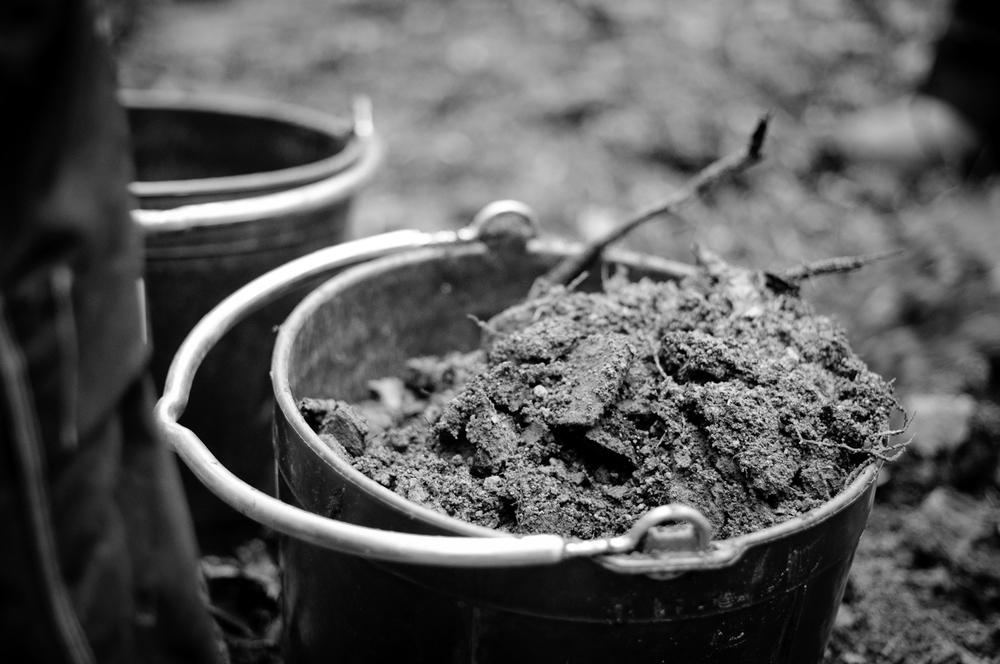 Golden soil. Brown Pow. Kärt barn har många namn.