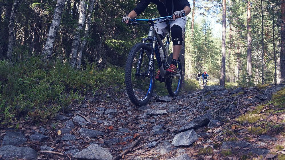 Cykelbilder-10.jpg