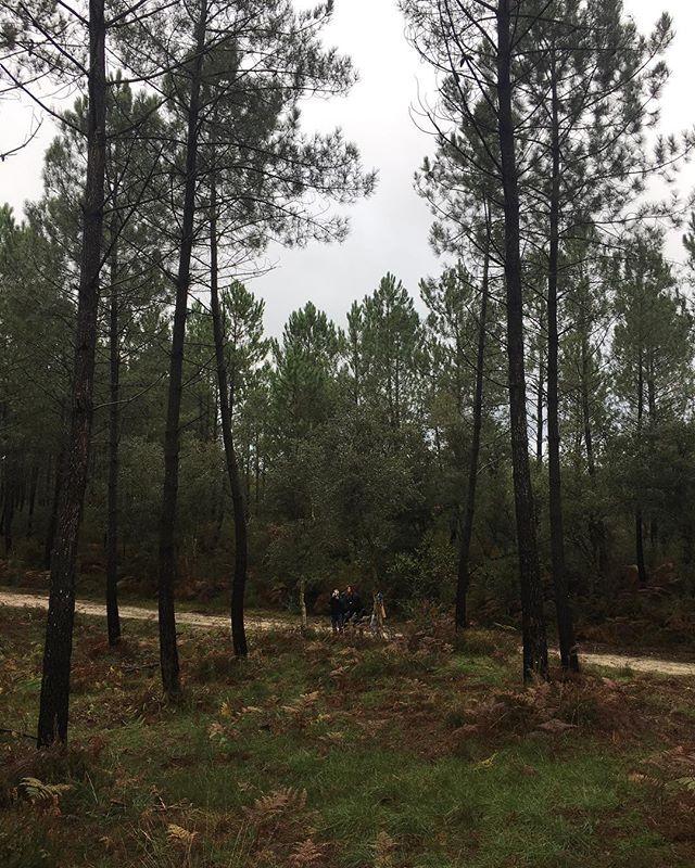 Shooting in the wood. #seaandfeel @seaandfeel @celinehamelin @michael_ferire
