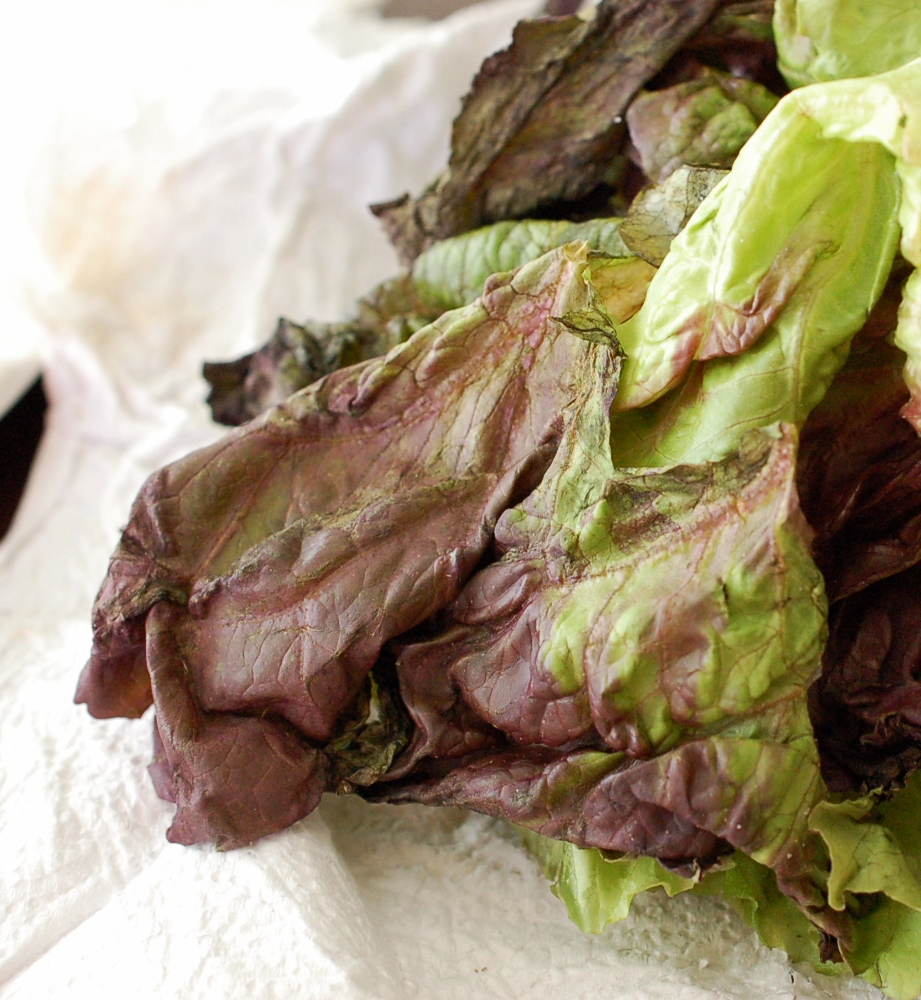 Cooking Tip:  How To Revive Wilted Lettuce