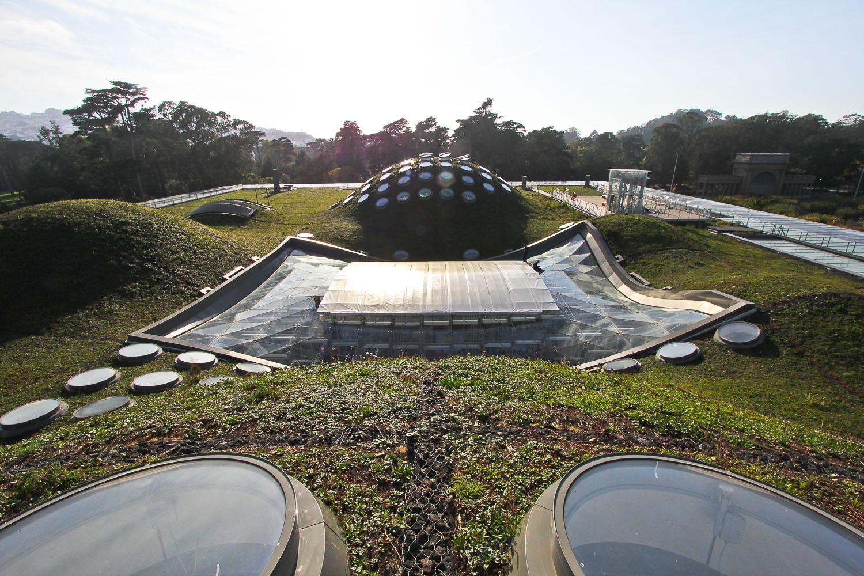 Resultado de imagem para CALIFORNIA ACADEMY OF SCIENCES roof